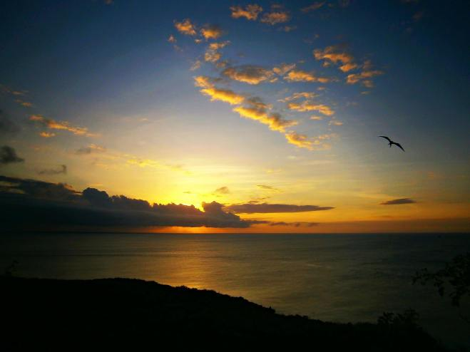 sunset-with-frigate-bird